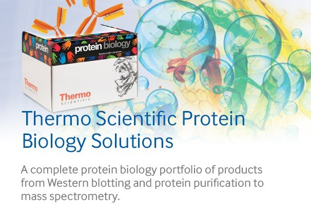 biology protein scientific thermo solutions categories featured